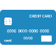 NationalLink Credit Card Icon